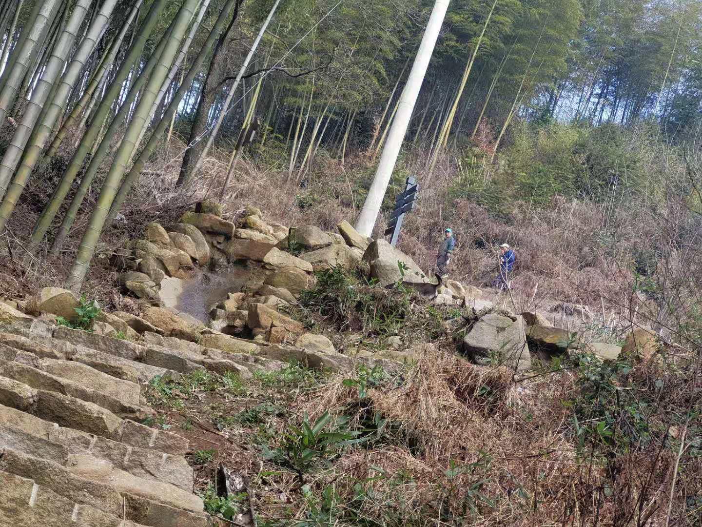林中陡峭近路